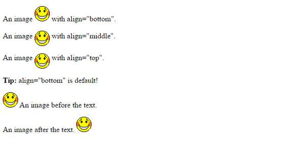 آموزش HTML  تگ IMG